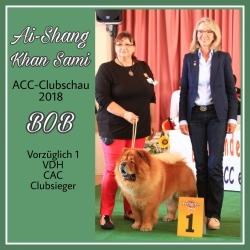 ACC Clubschau