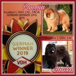German Winner Show Leipzig